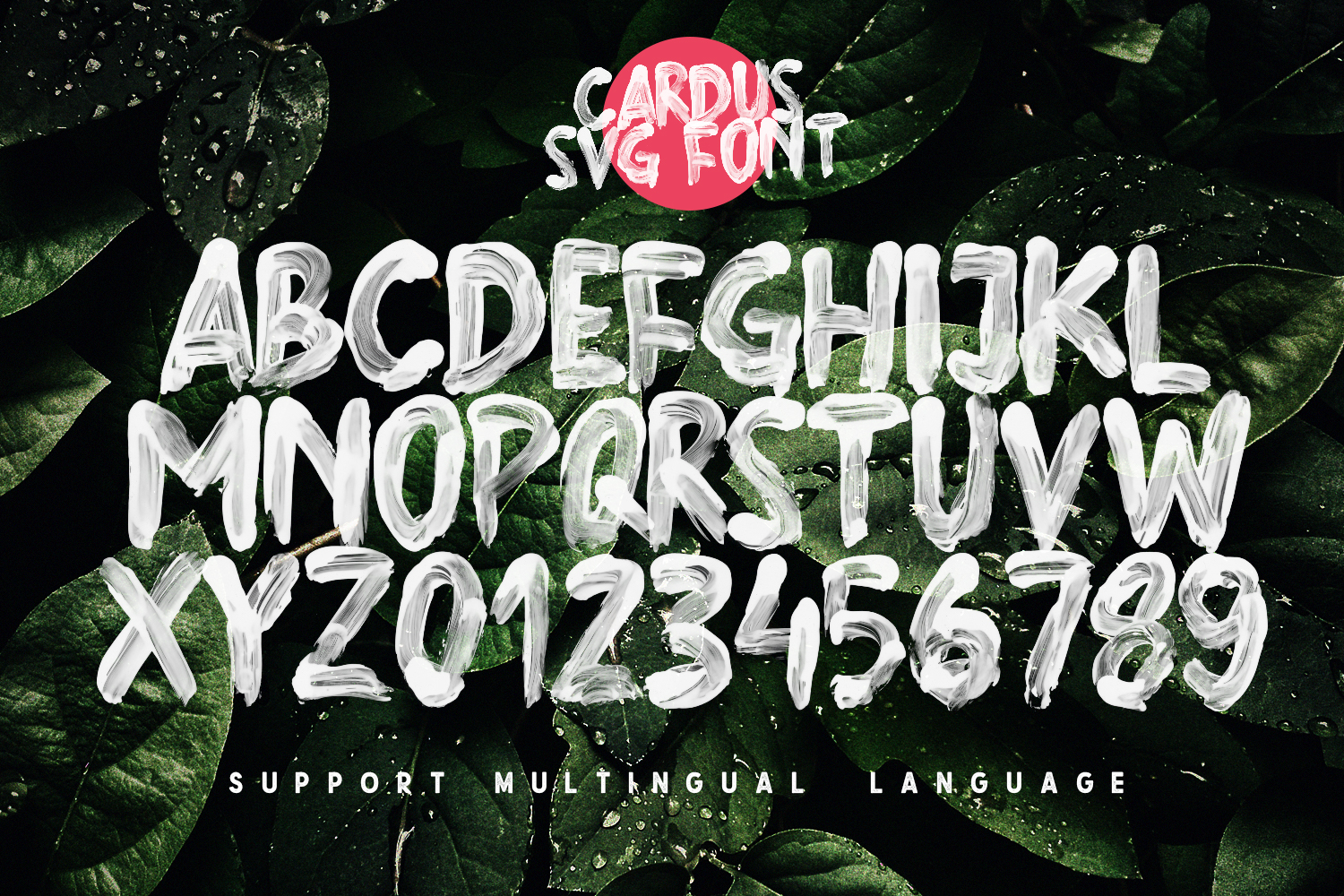 Cardus Brush SVG Font example image 6