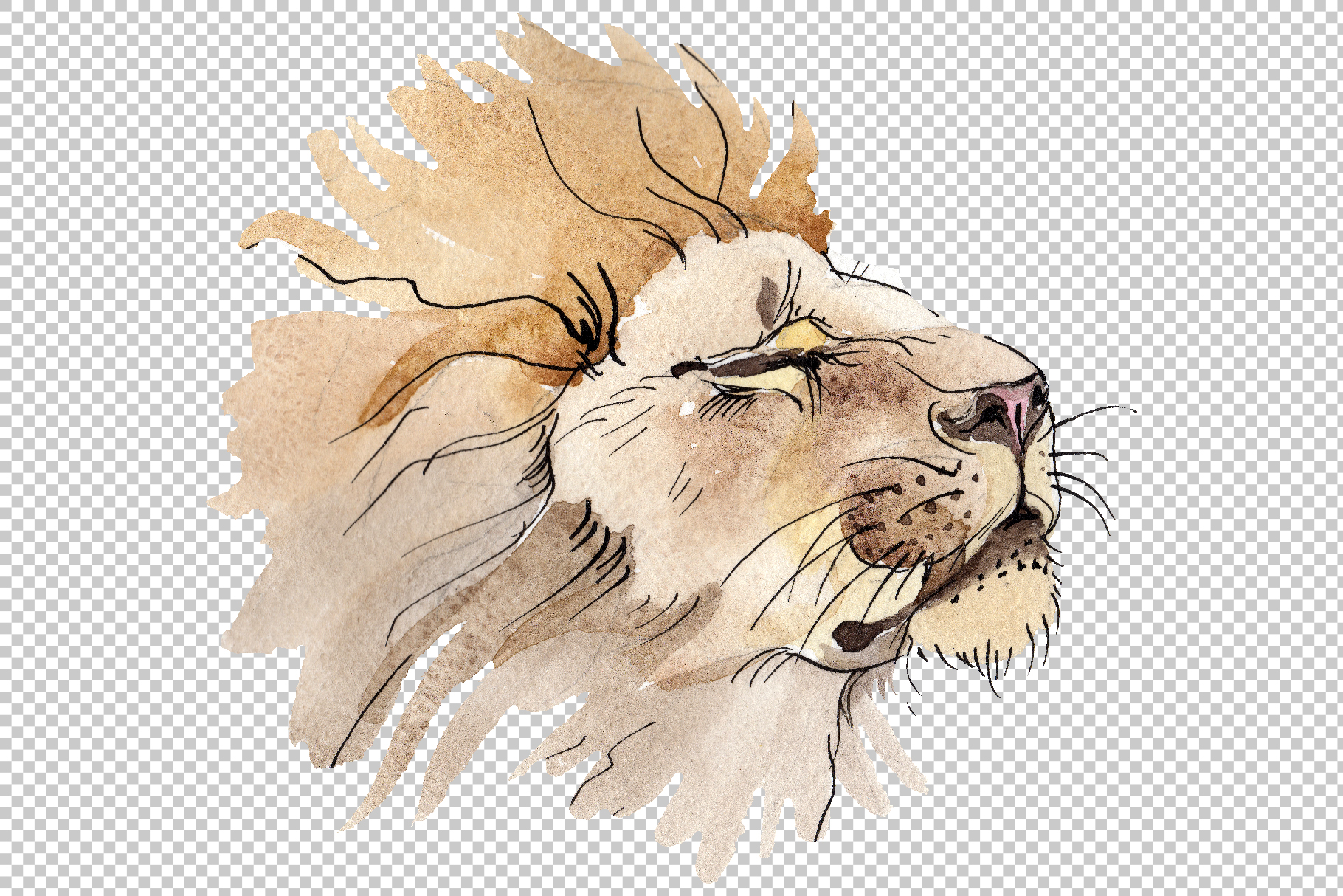 Animal Lion Watercolor png example image 2