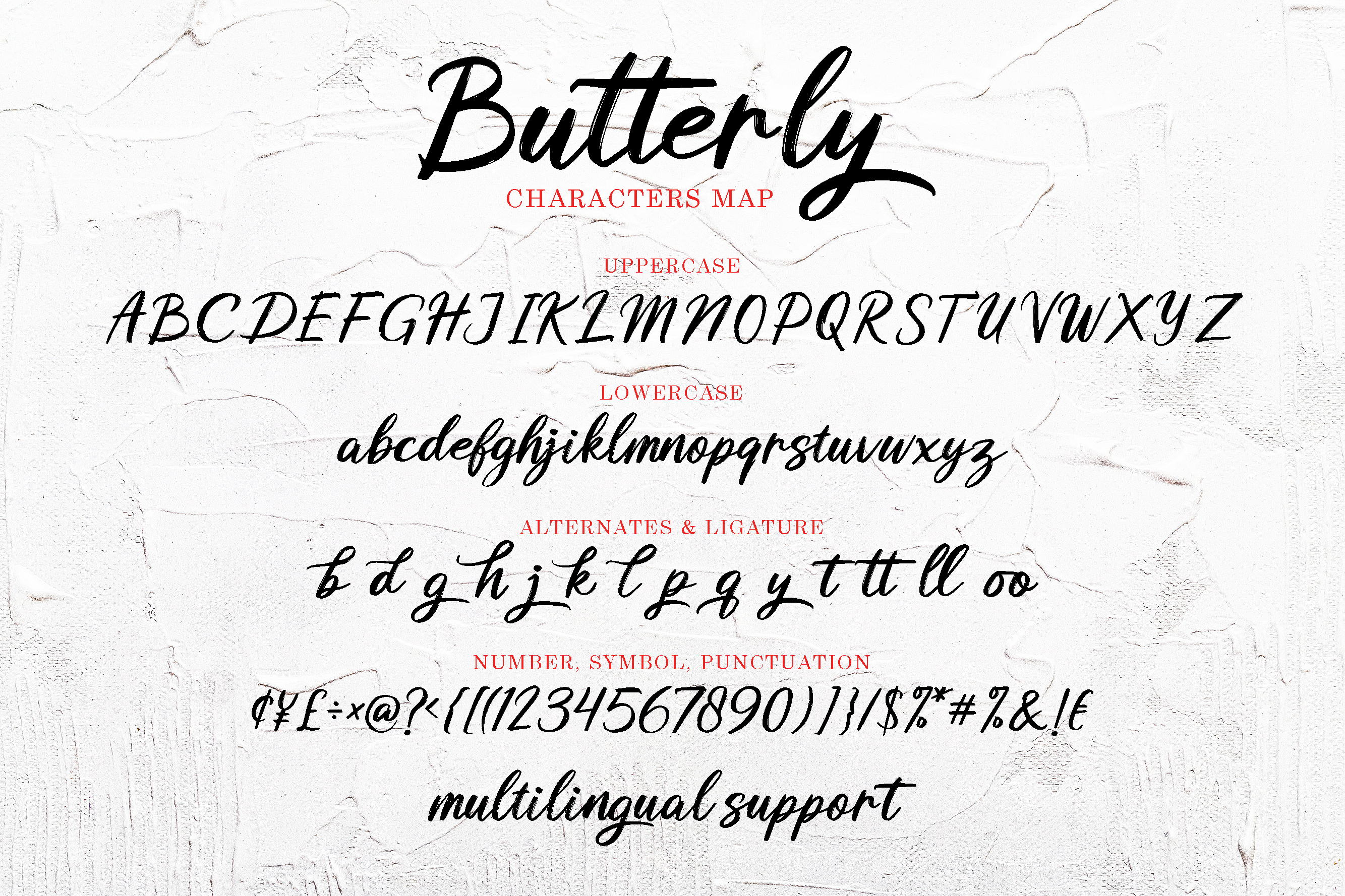 Butterly brush pen font example image 9