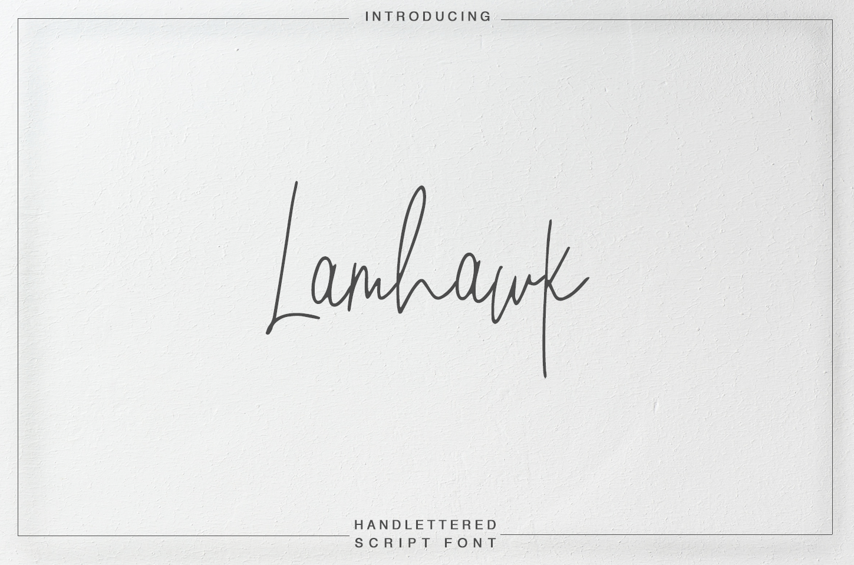 Lamhawk example image 1