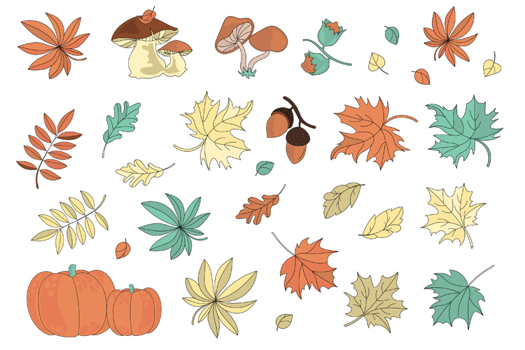 AUTUMN Vecor Clipart & Digital Print Set example image 11