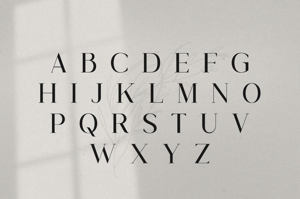 Gorgeous Serif Font example image 6