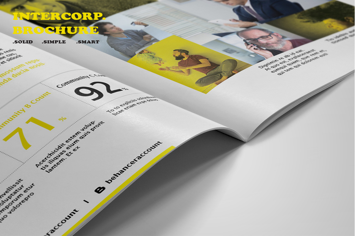 Intercorp Brochure Template example image 11