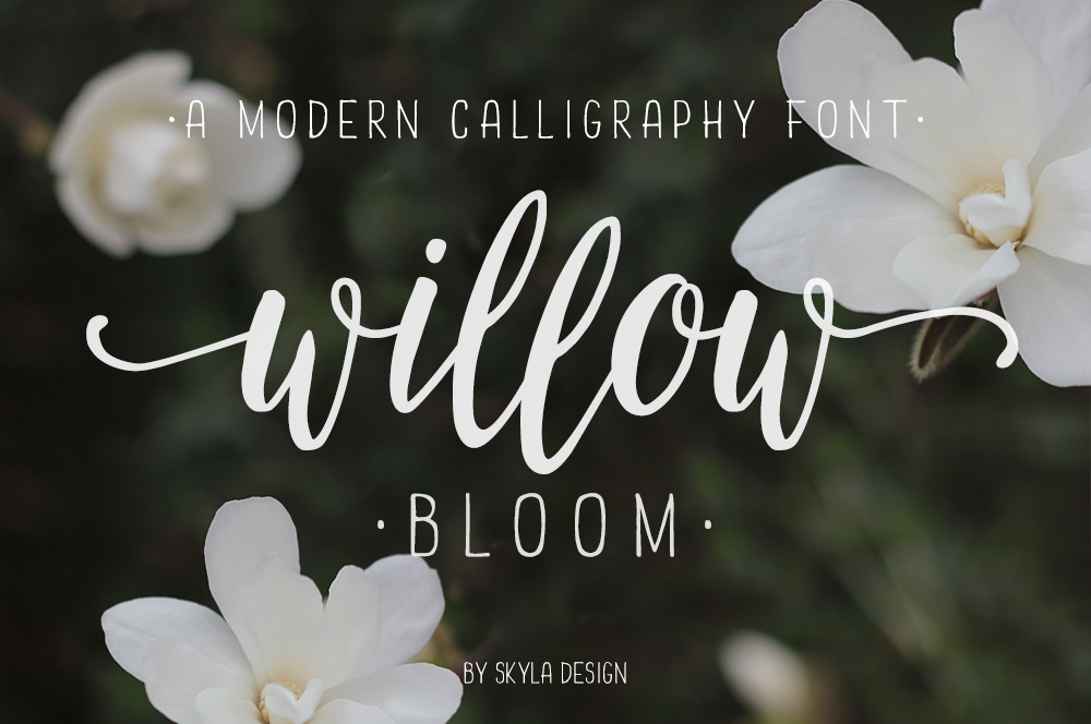 Modern Calligraphy Font Willow Bloom Example Image 1