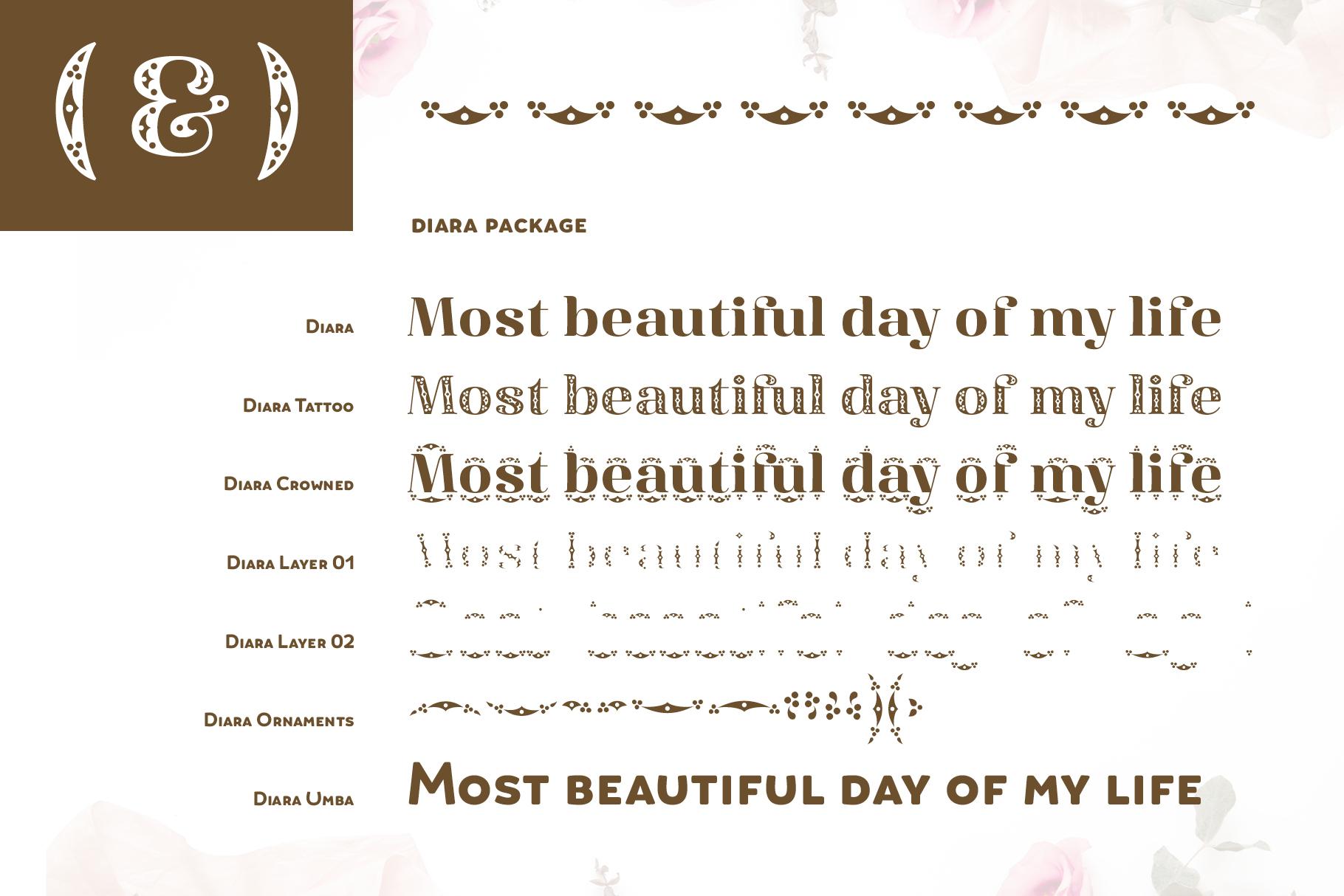 Diara Wedding Font example image 8