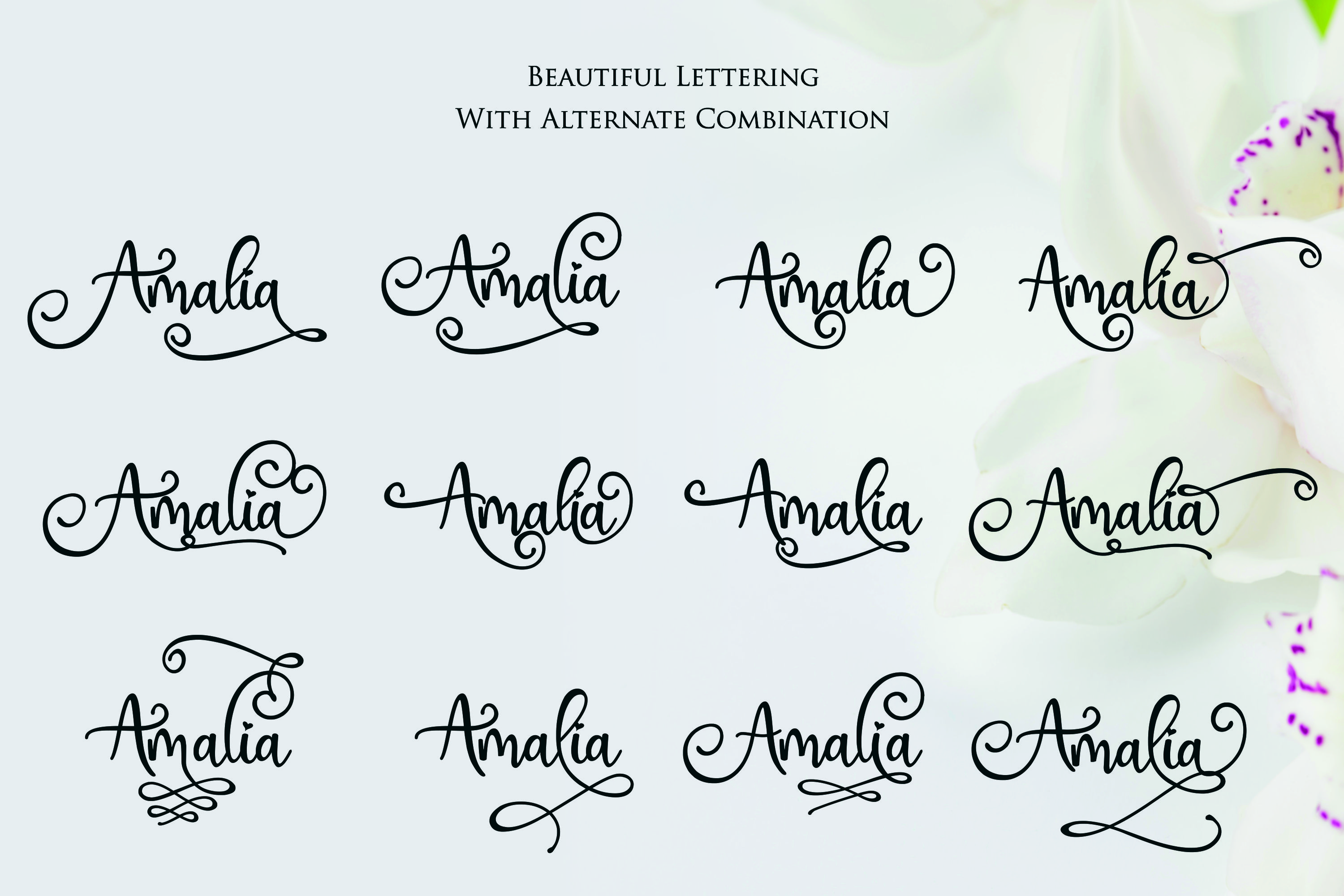 Hai Butterfly Font Duo and 500 Vectors example image 12