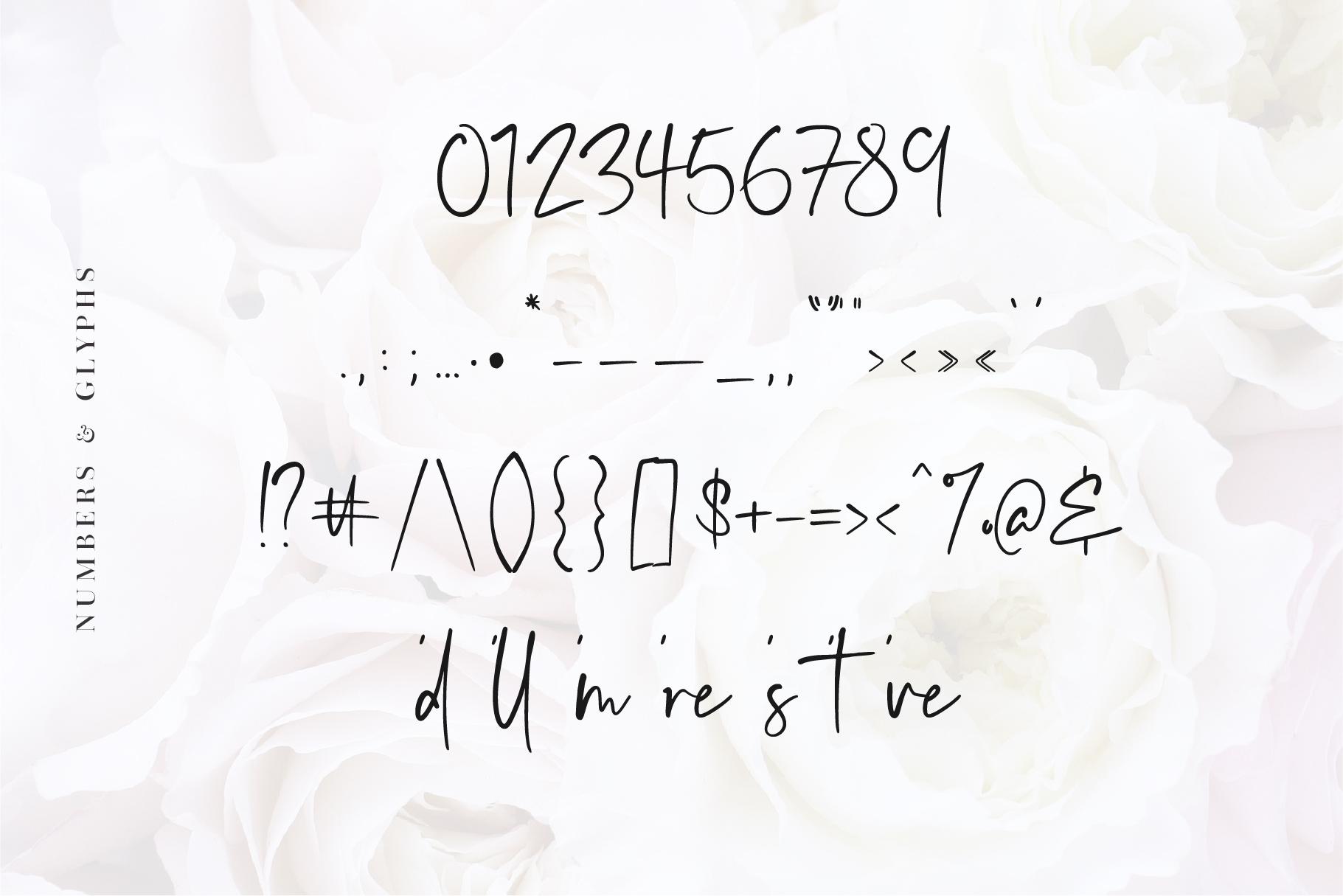 Audrey - A Script Font example image 9