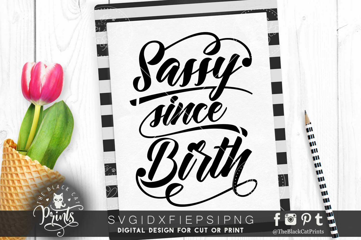 Sassy since birth SVG DXF PNG EPS example image 1