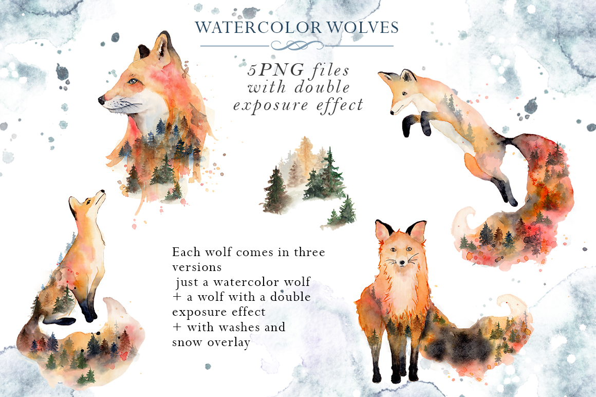 Woodland story Vol.2 Foxes example image 5
