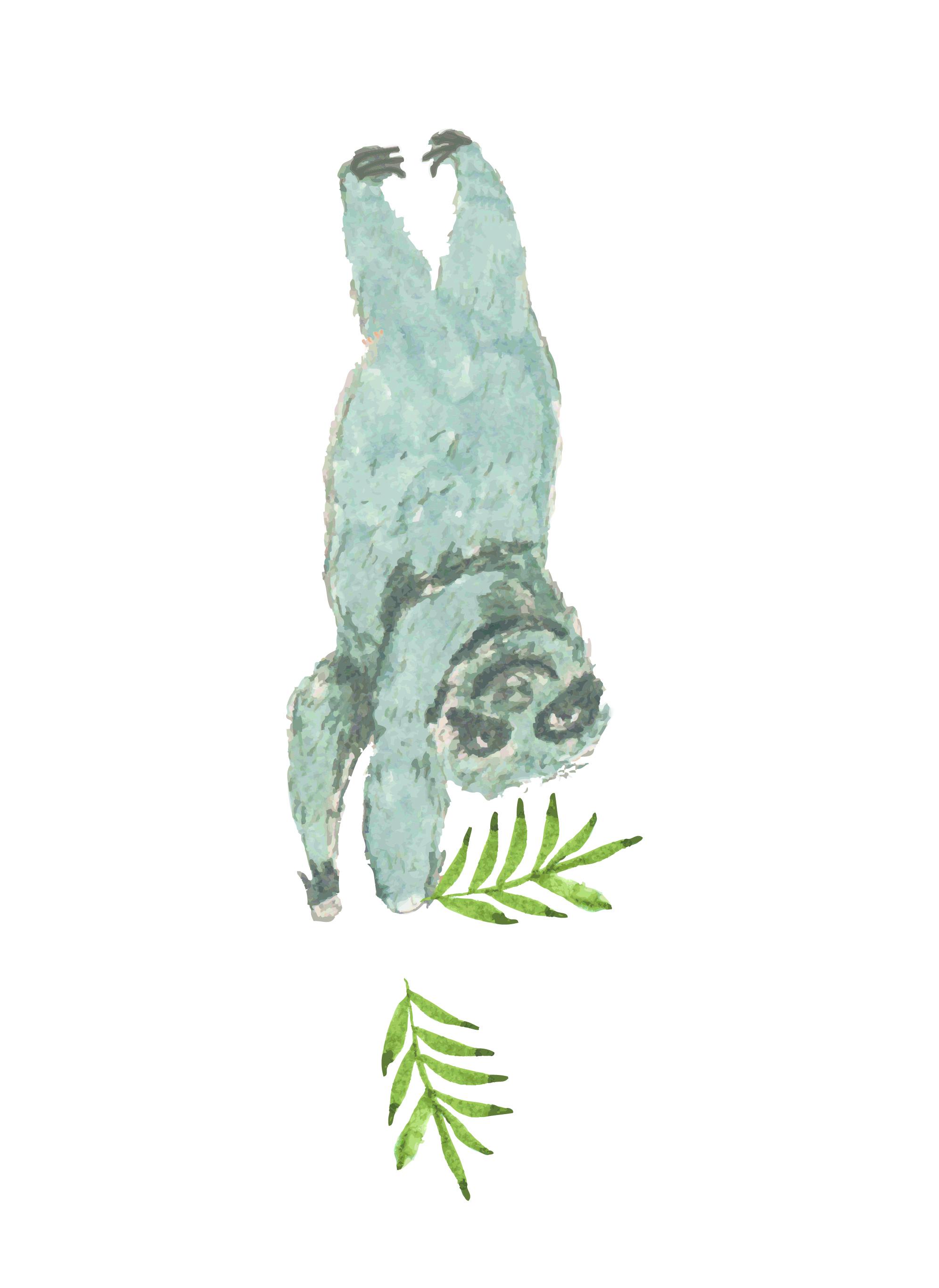 Tropicla Breeze clip art bundle example image 4