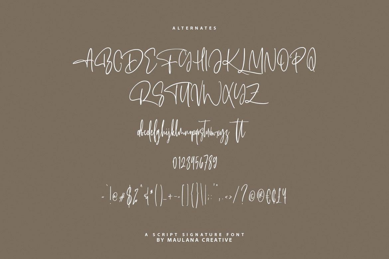 Alentropics Script Signature Font example image 11
