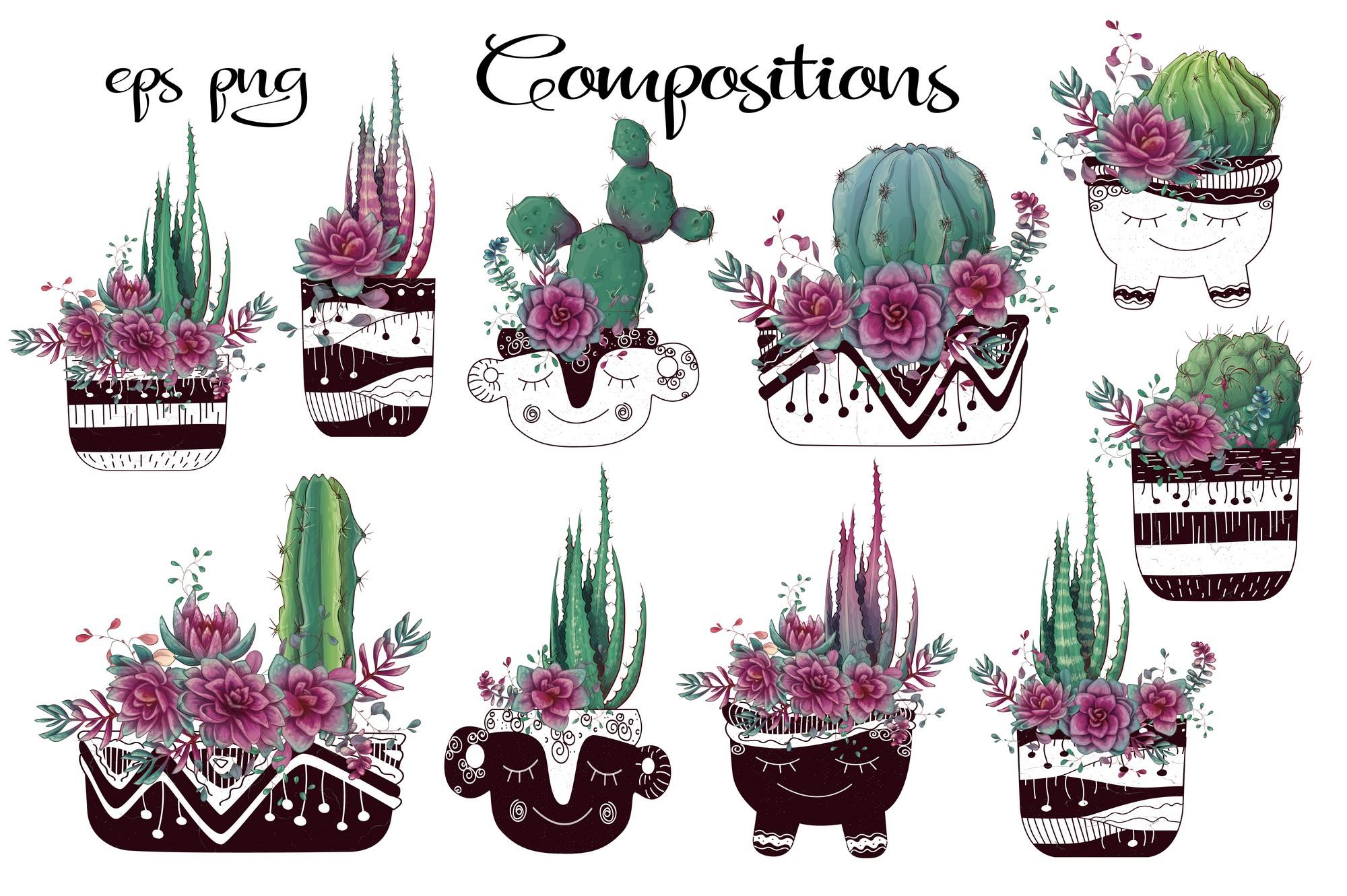 Cacti & Succulents in purple example image 2