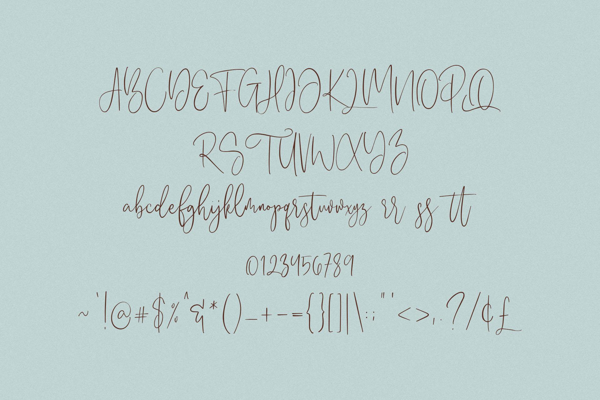 Anistton - Feminine Font example image 8