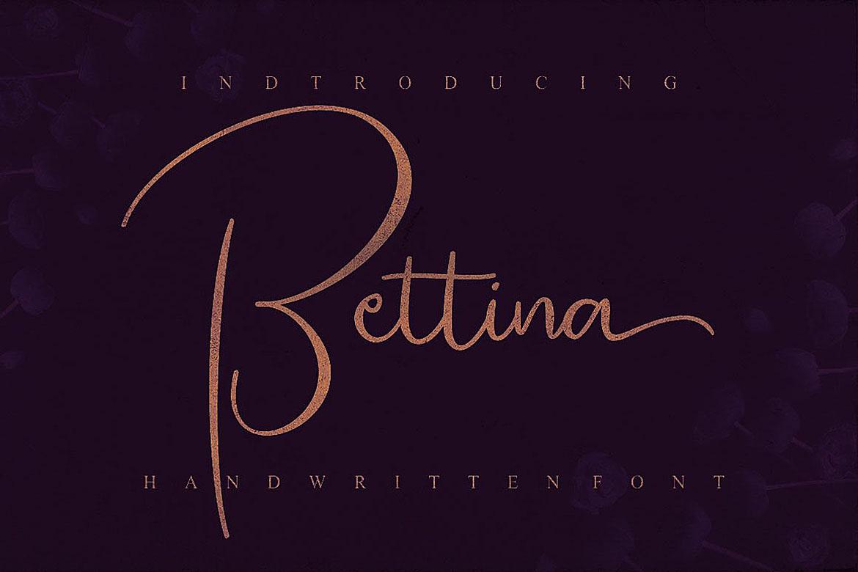 Bettina Script Font example image 4