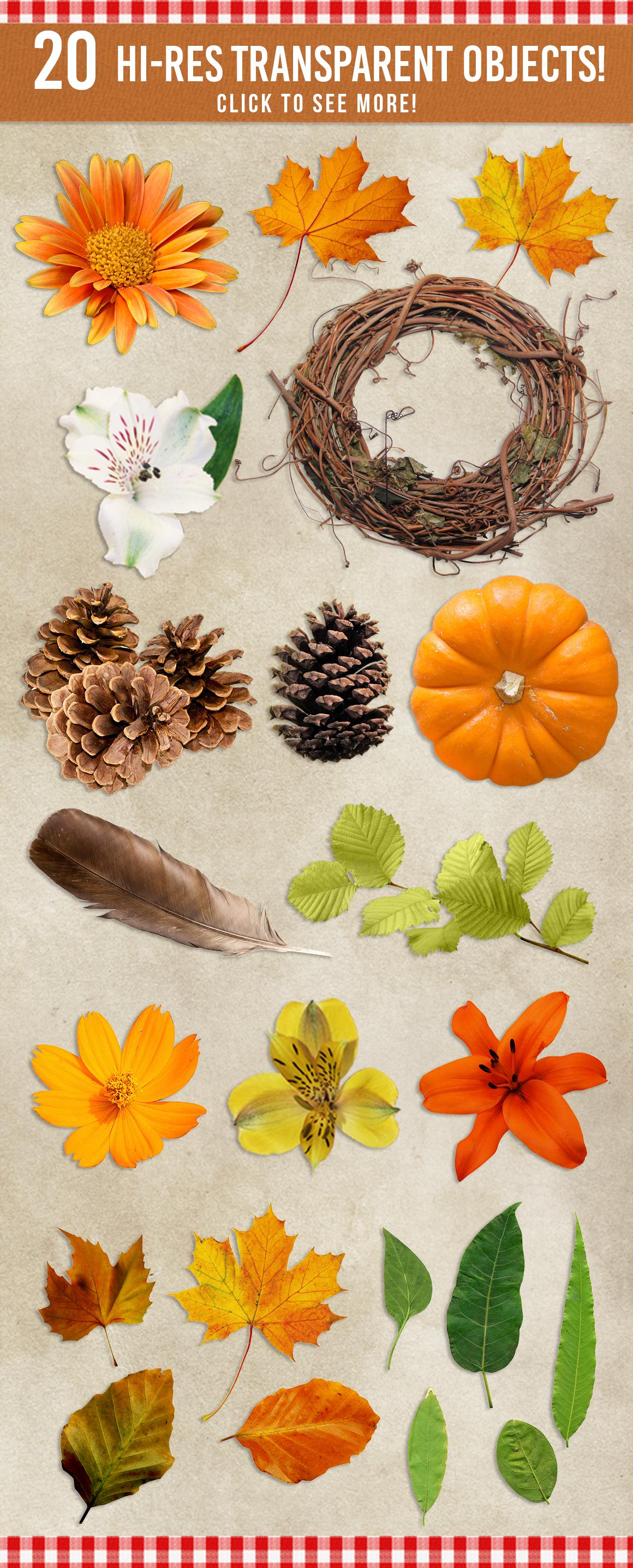 Autumn Mockup Scene Creator example image 5