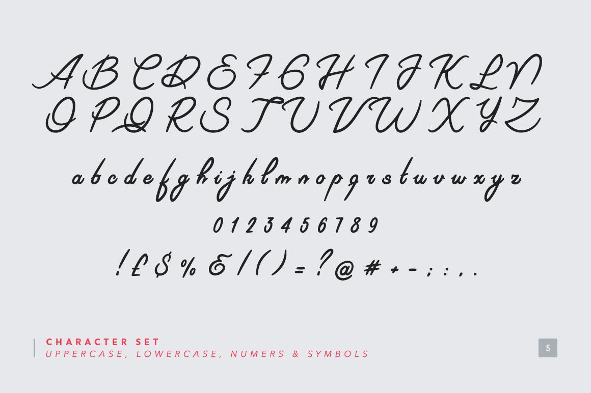 Riviera - Signature Font example image 5