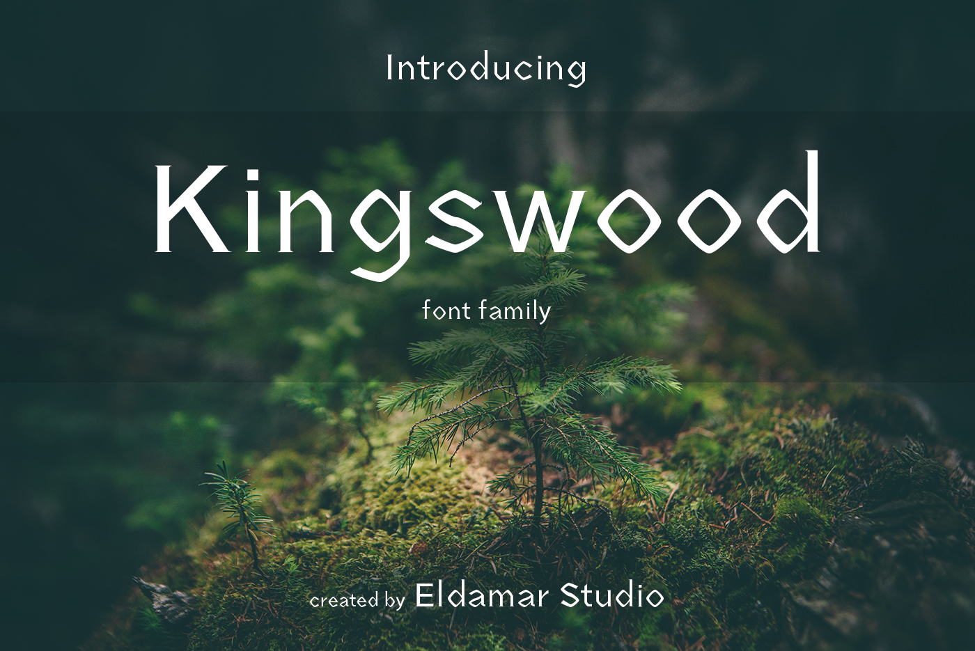 Kingswood Font example image 1