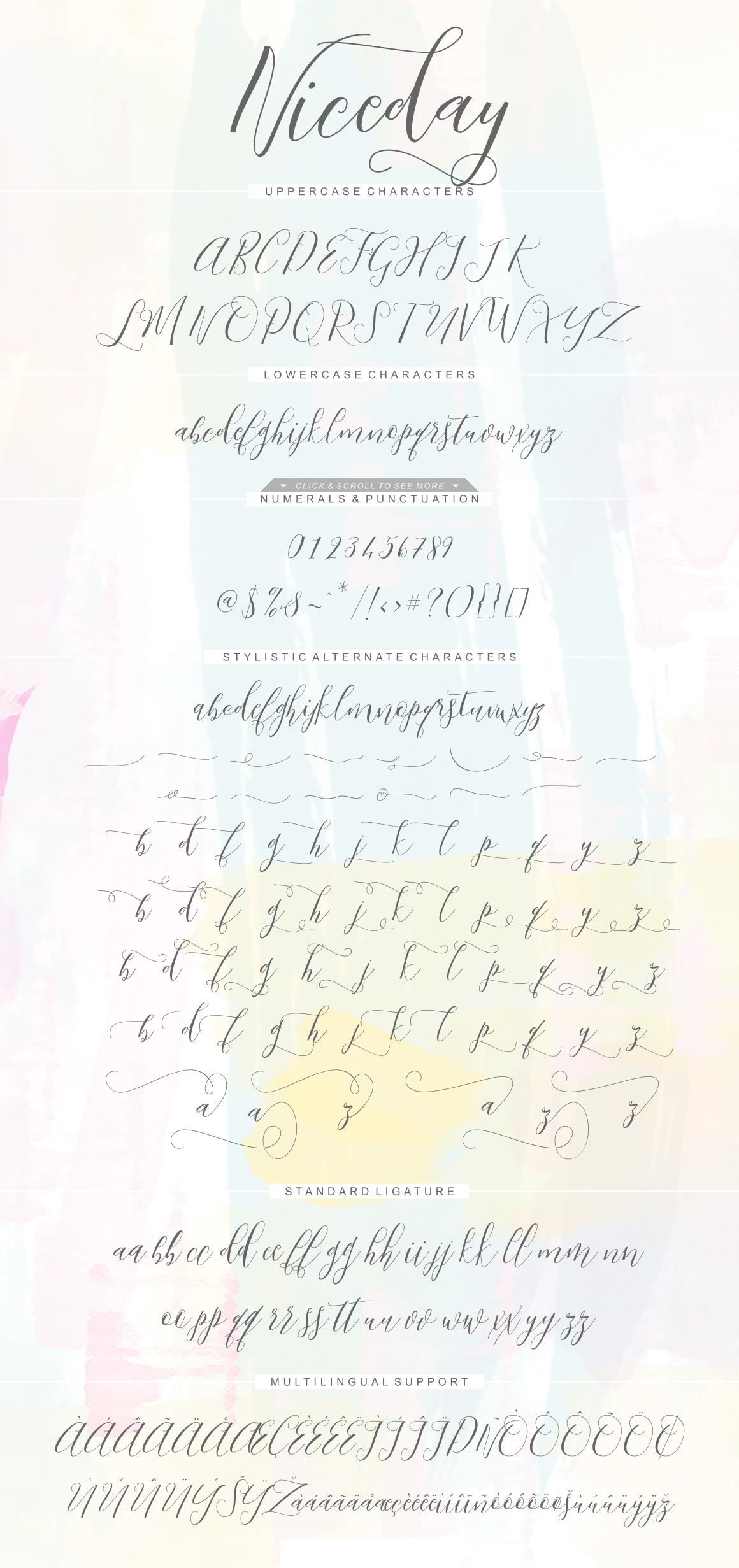 Niceday Script Font example image 2