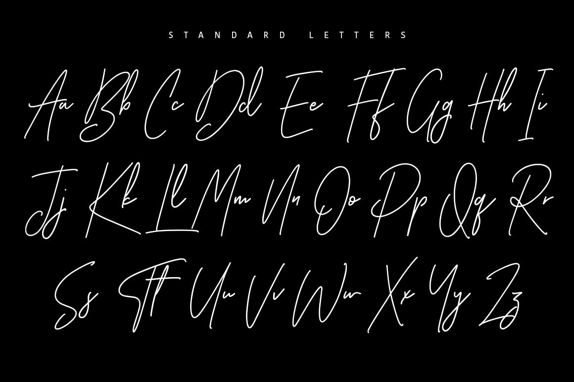 Ansterdam - Clean Signature Font example image 8