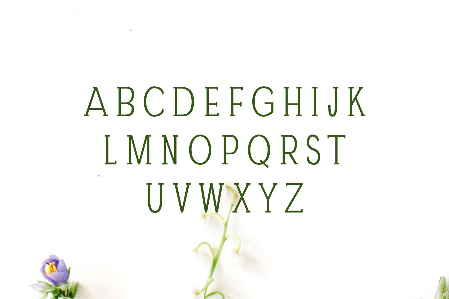 Darrion Slab Serif Typeface example image 2