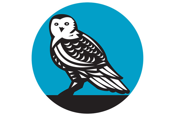 Snowy Owl Circle Retro example image 1