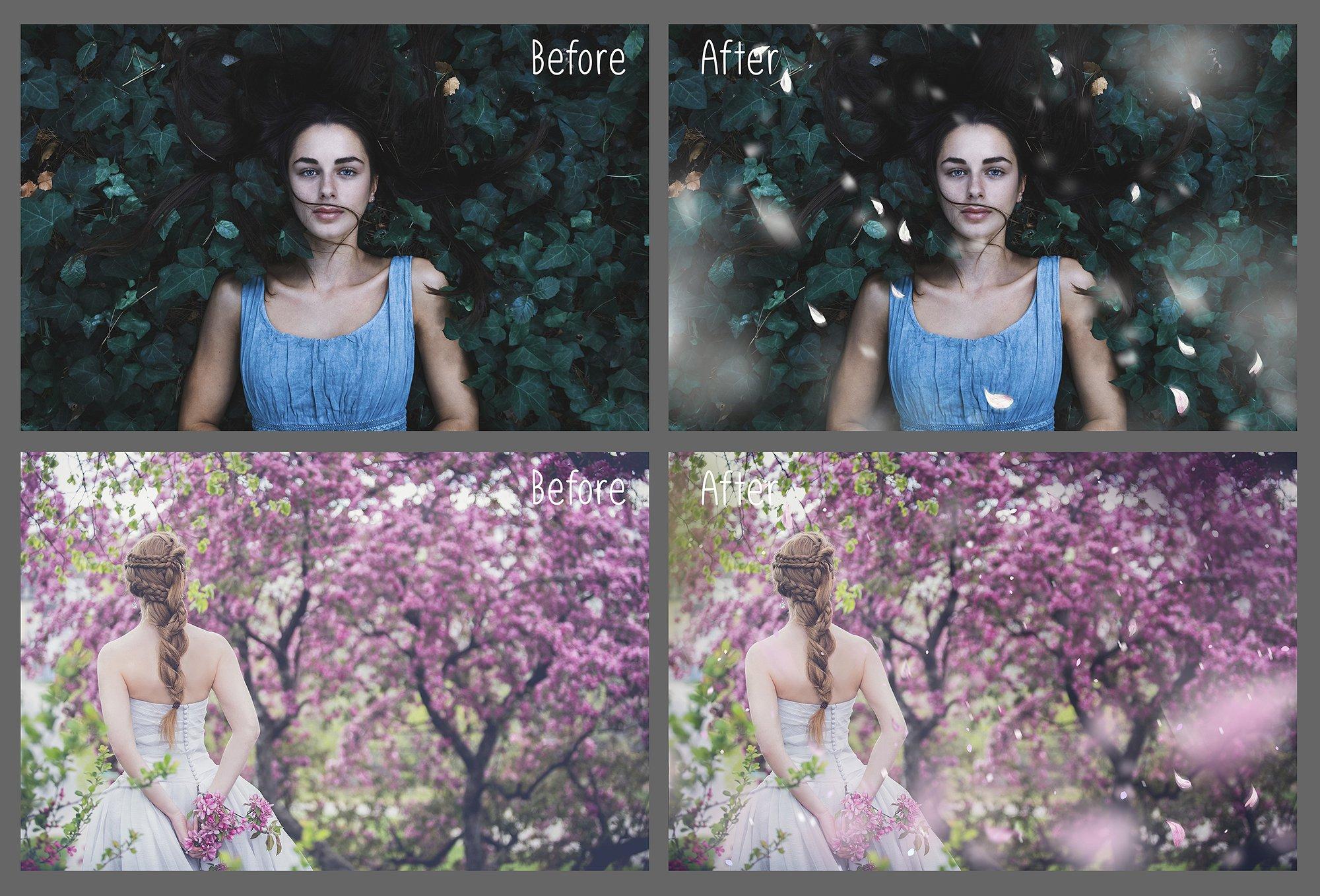 White petals photo overlays example image 2
