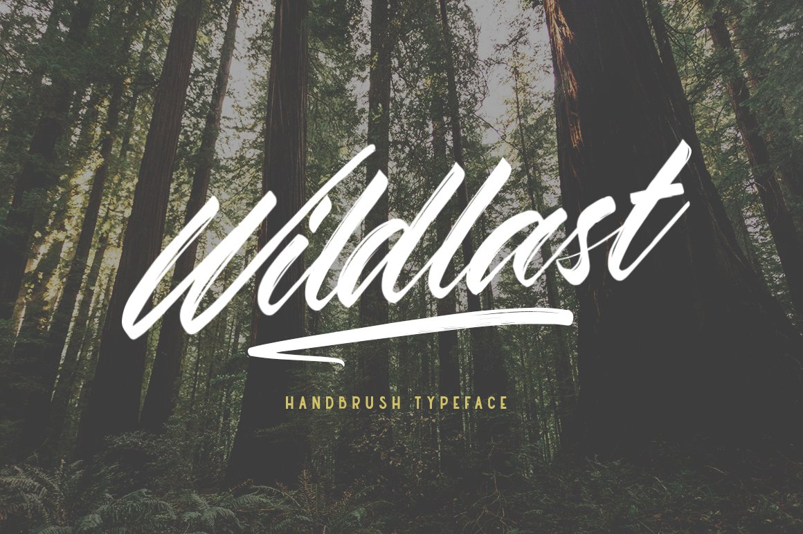 Wildlast Handbrush Typeface example image 1