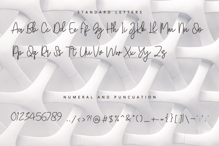 Seraphine - Handwritten Font example image 5