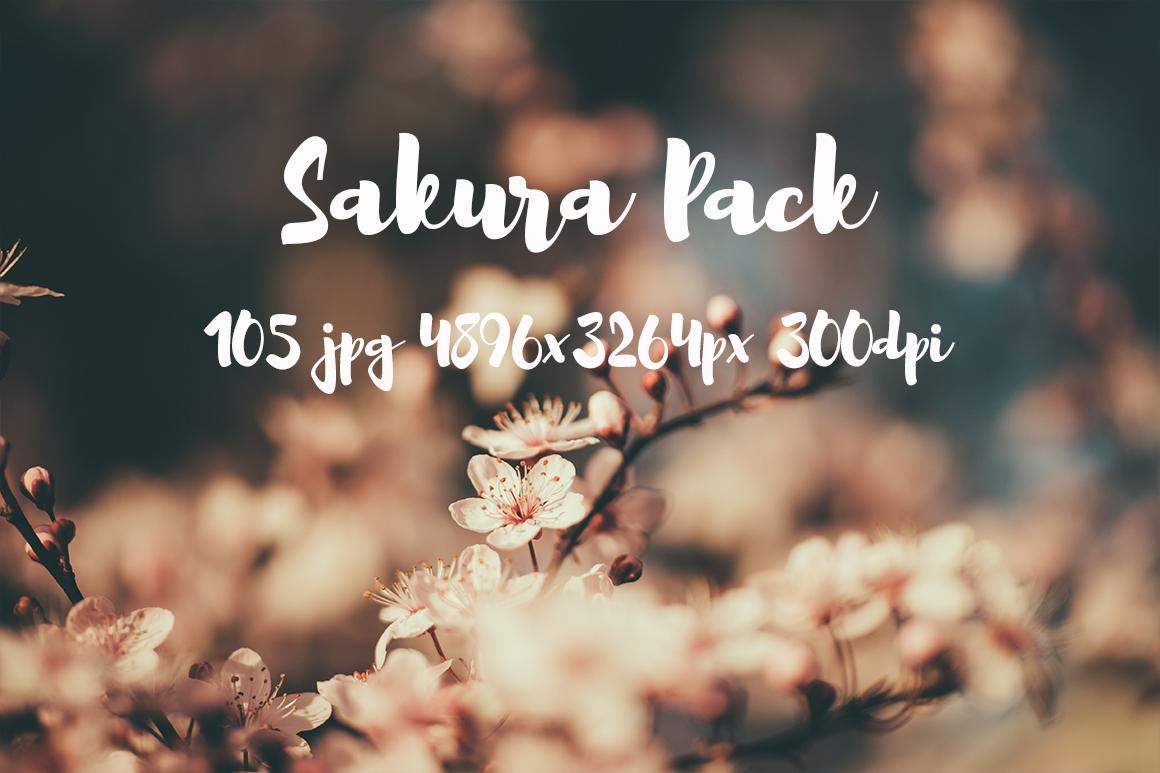 sakura photo pack example image 14