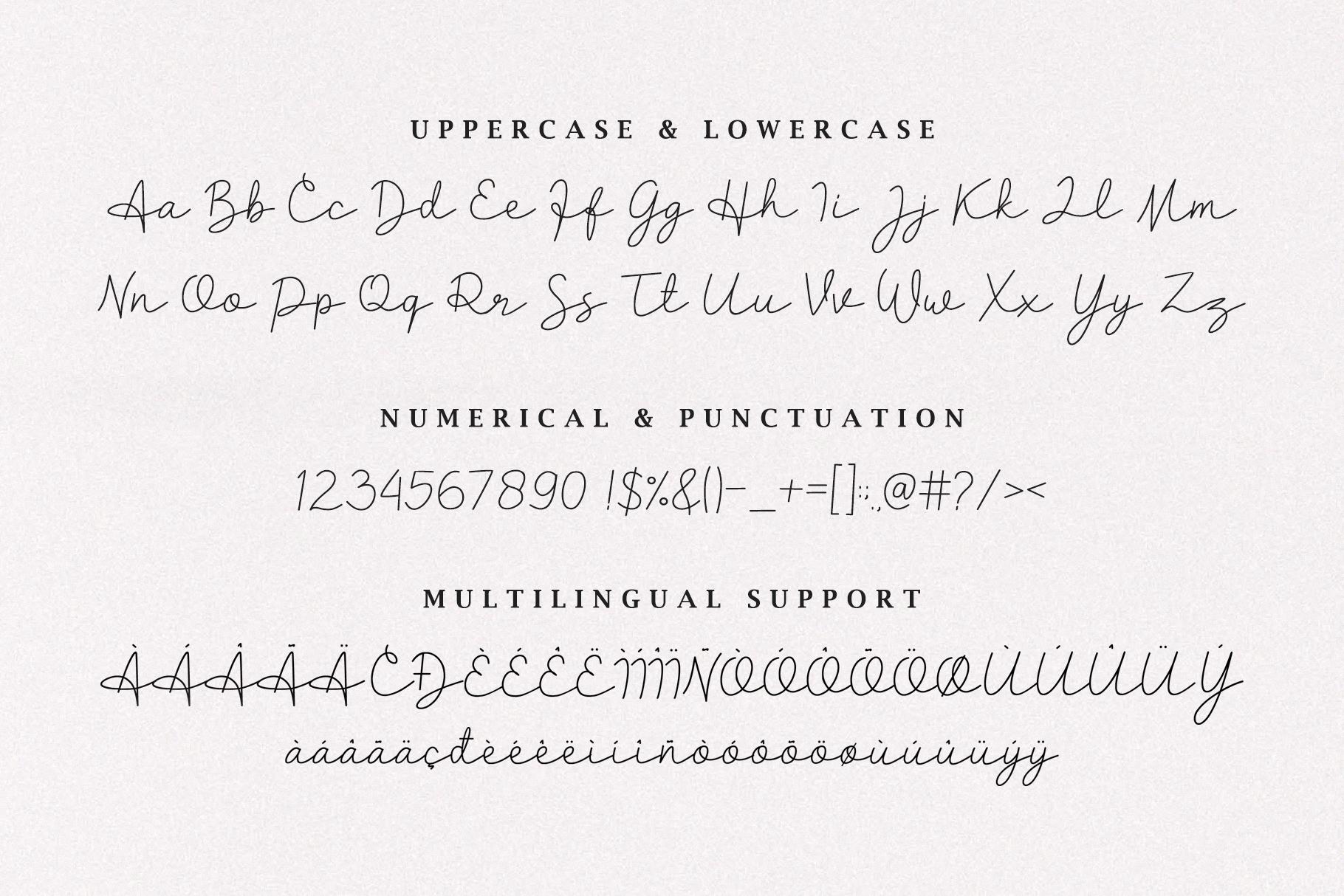 Clarisa Script Font example image 5