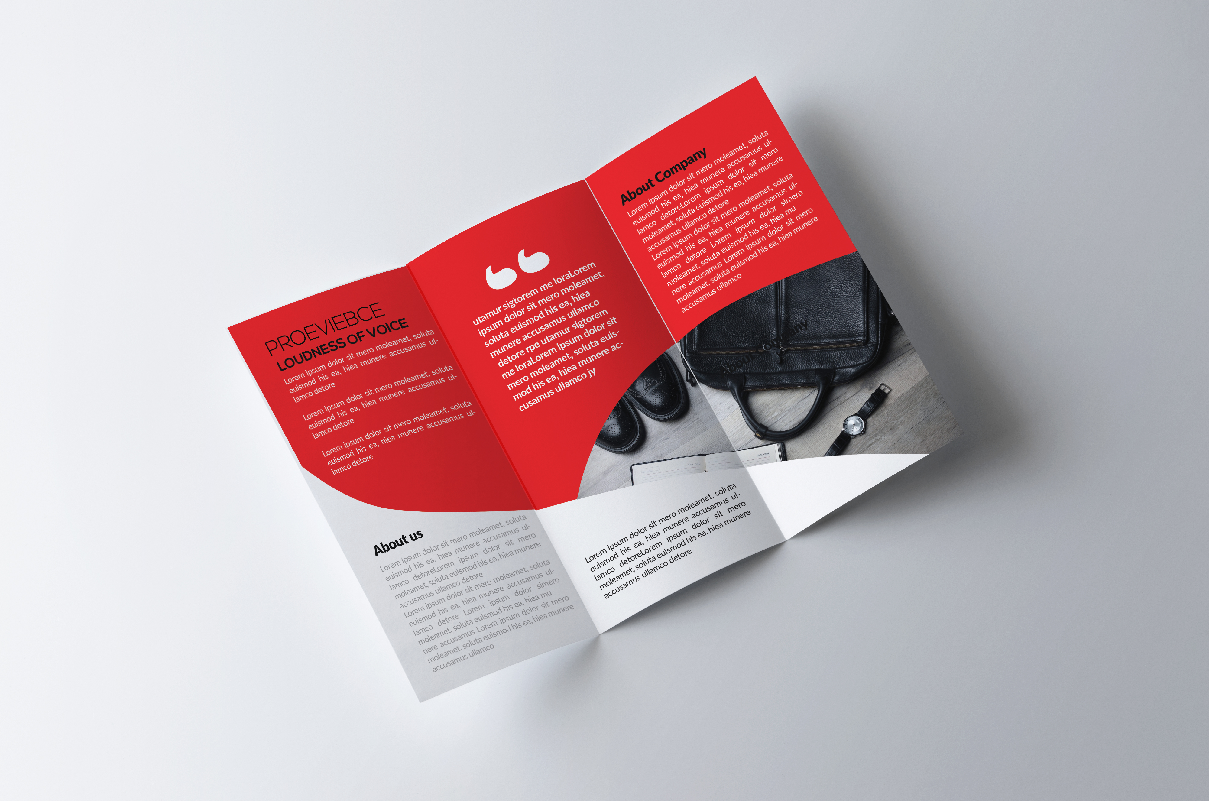 Corporate Trifolds Brochures example image 3