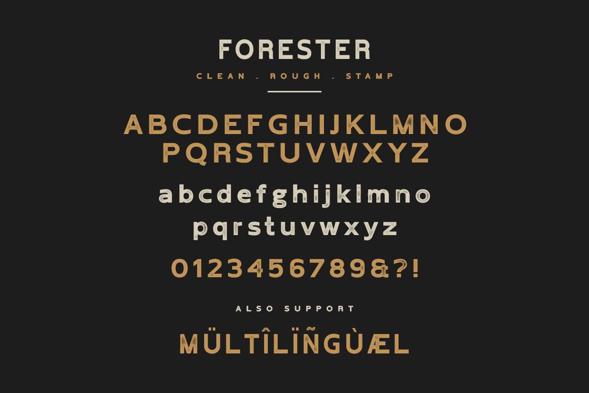Forester Vintage Sans Serif example image 5