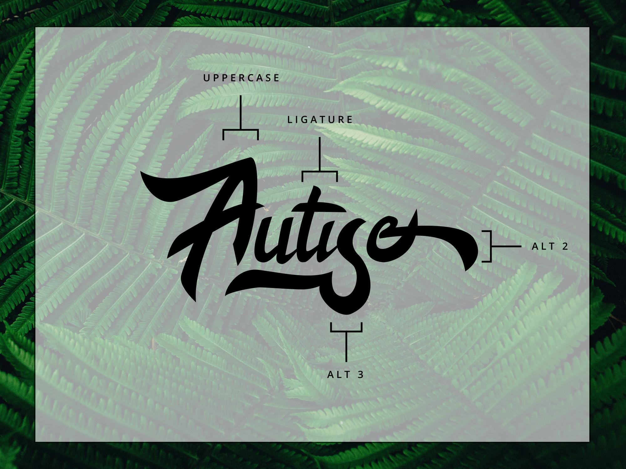 Autise font set example image 5