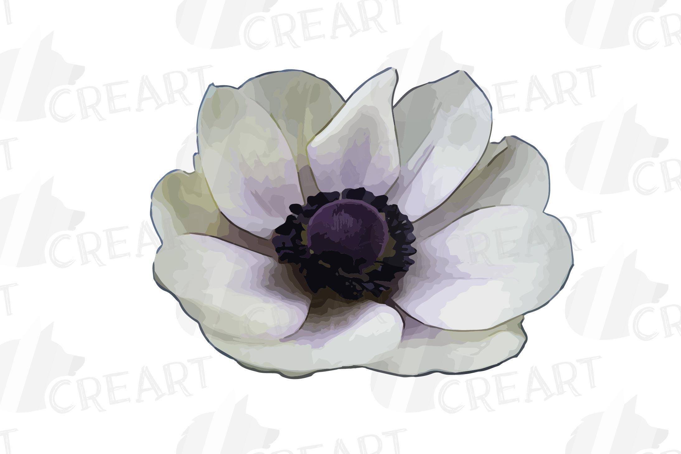 Anemone watercolor clip art pack, watercolor anemone design example image 7