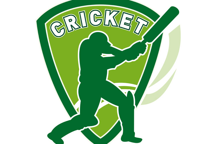 cricket player batsman batting shield example image 1