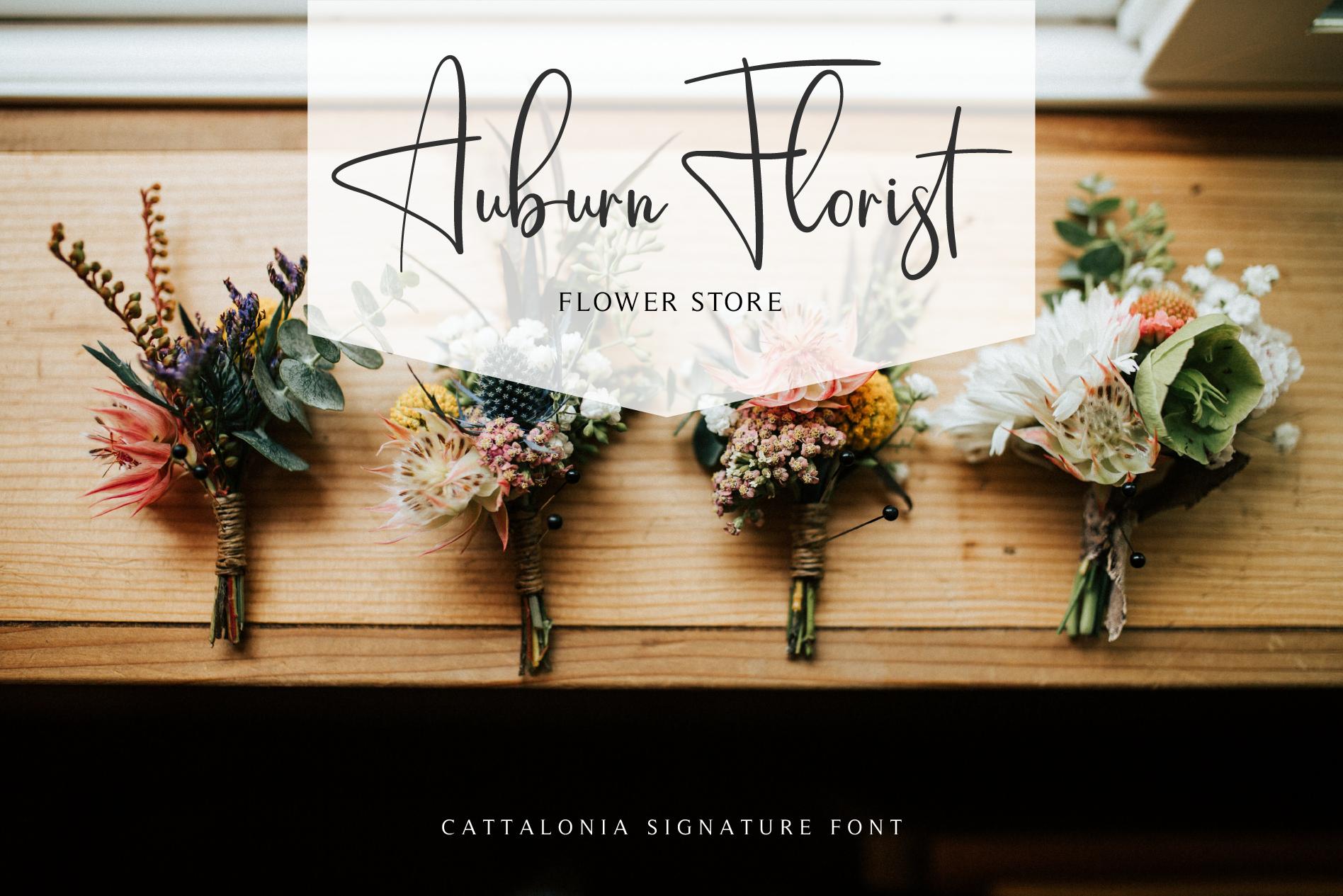 Cattalonia Signature Font example image 4