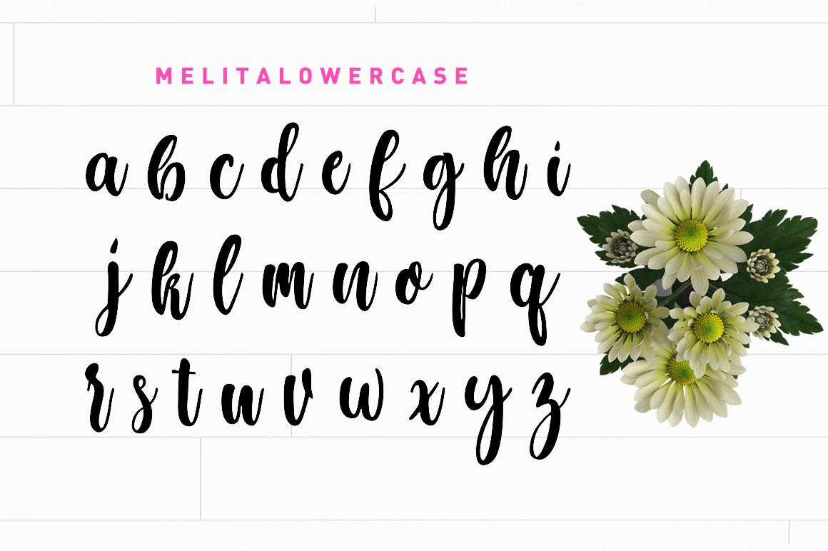 Melita Script example image 3