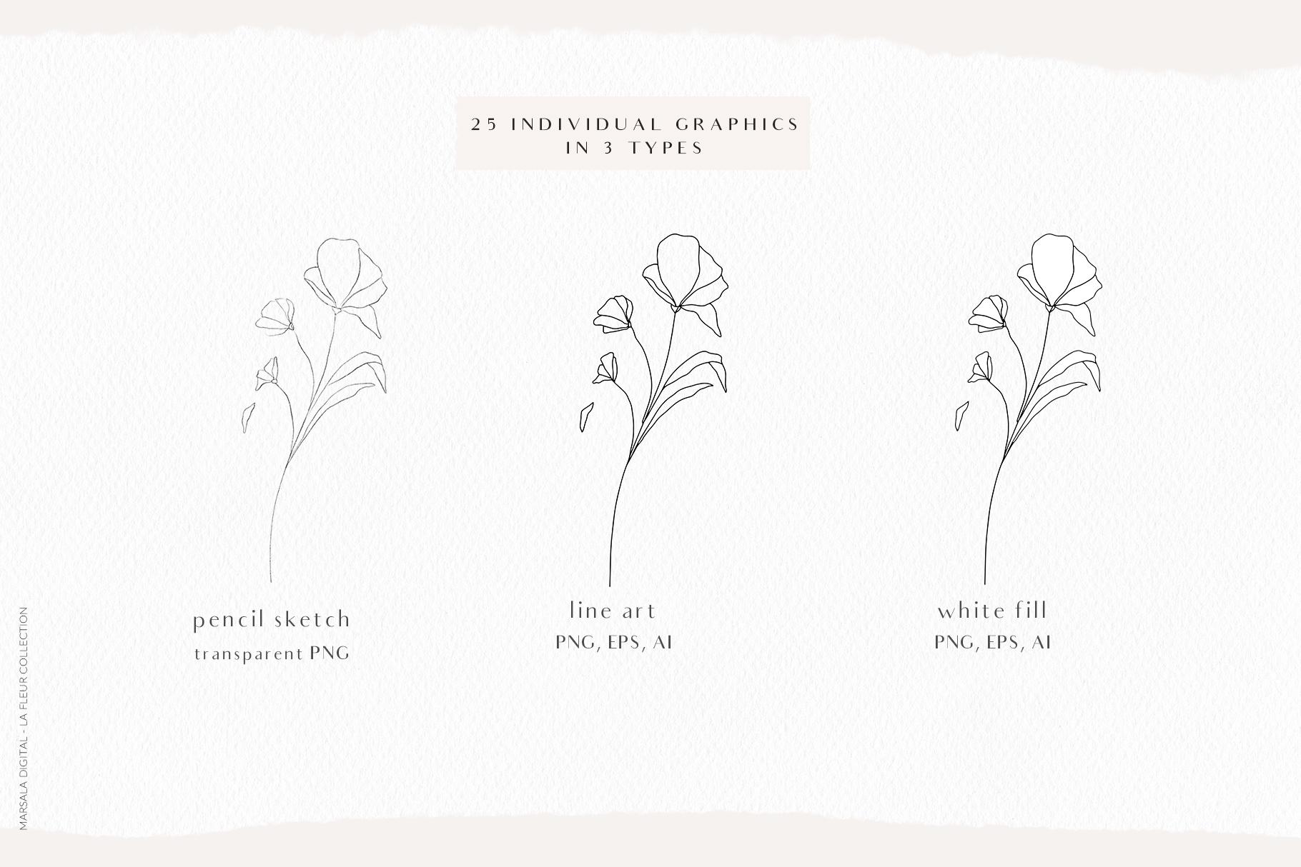 Floral Pencil Sketches Line Art - La fleur example image 6