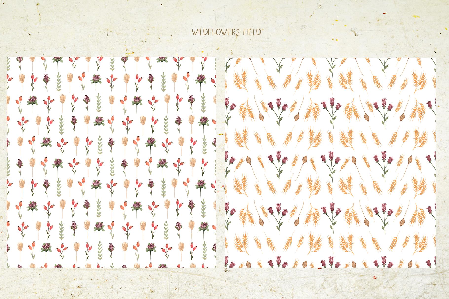 Wildflowers field example image 5