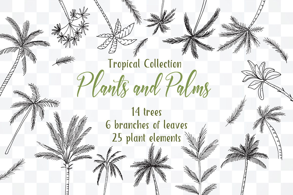 Tropical Exotic collection Tropical collection Summer Plants and PalmsPlants and Palms,tropical invitations, tropical tree example image 3