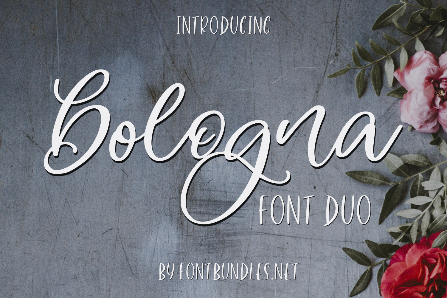 Bologna Font Duo example image 1