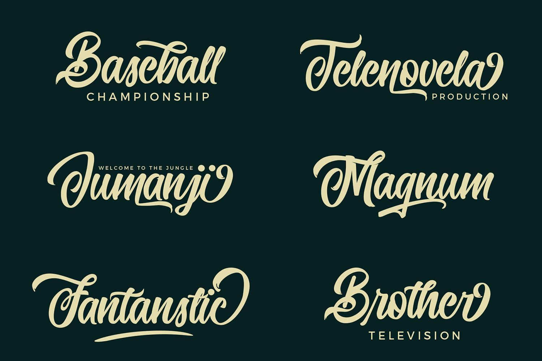 Quinshawna Font Script example image 10