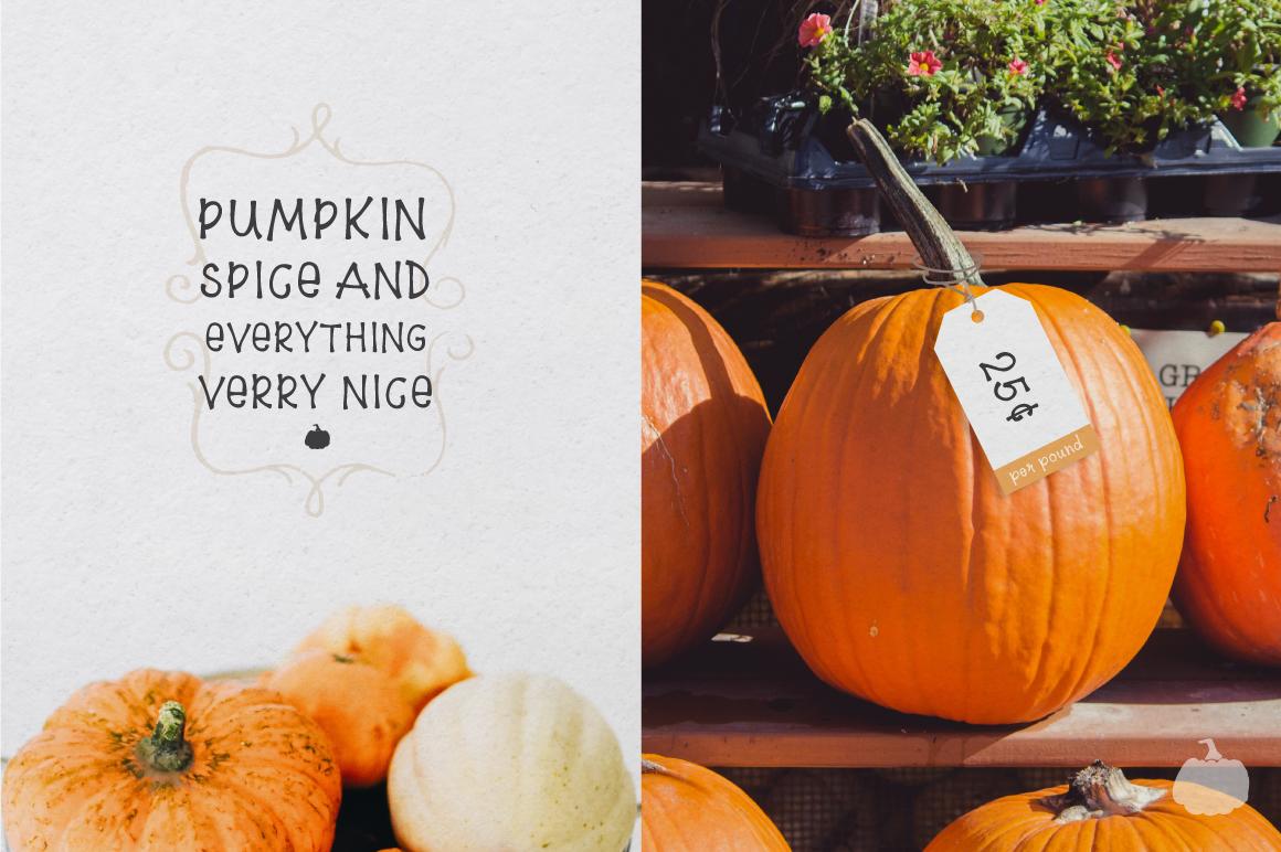 8$ Pumpkin Farm Font example image 5