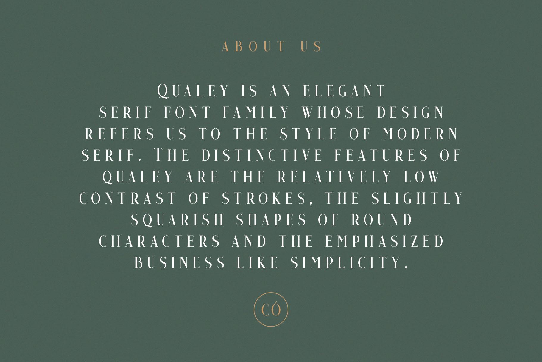 Qualey - Elegant Serif Font example image 5