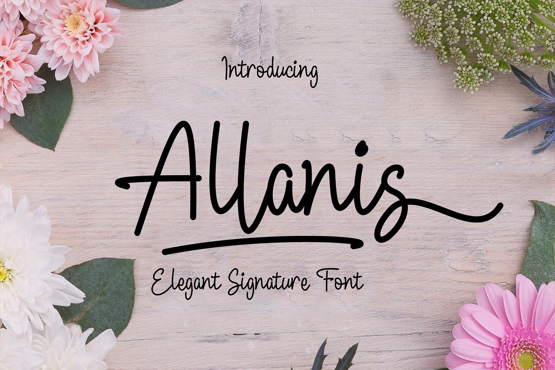 Allanis example image 1