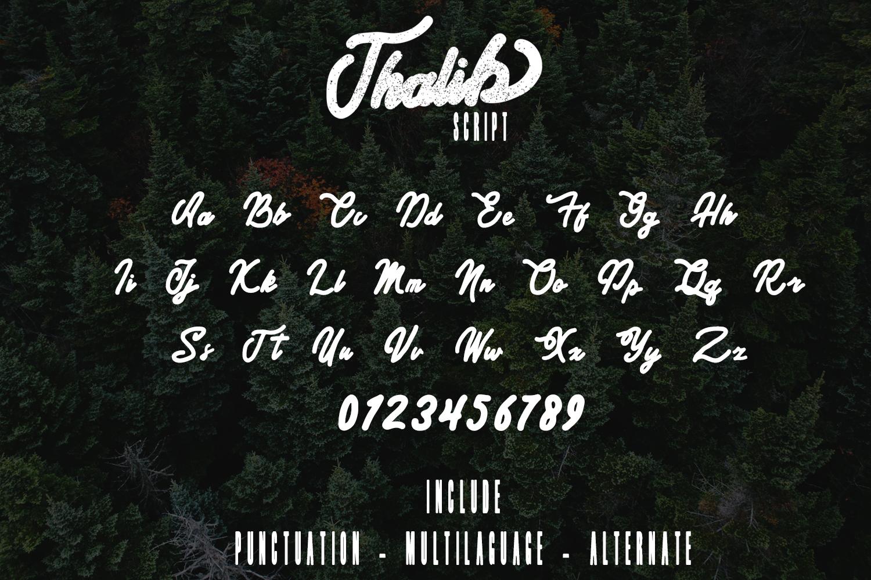 Thalib - Font Duo example image 5