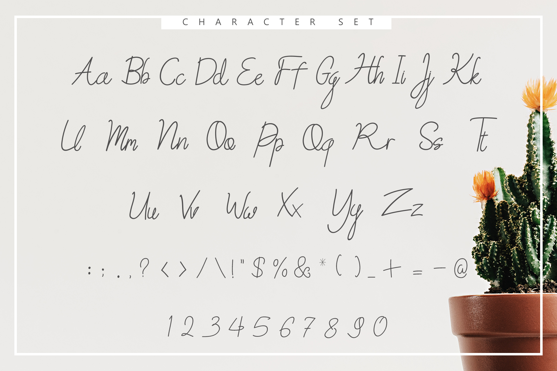 Sweet Petunia Handwritten Script example image 2