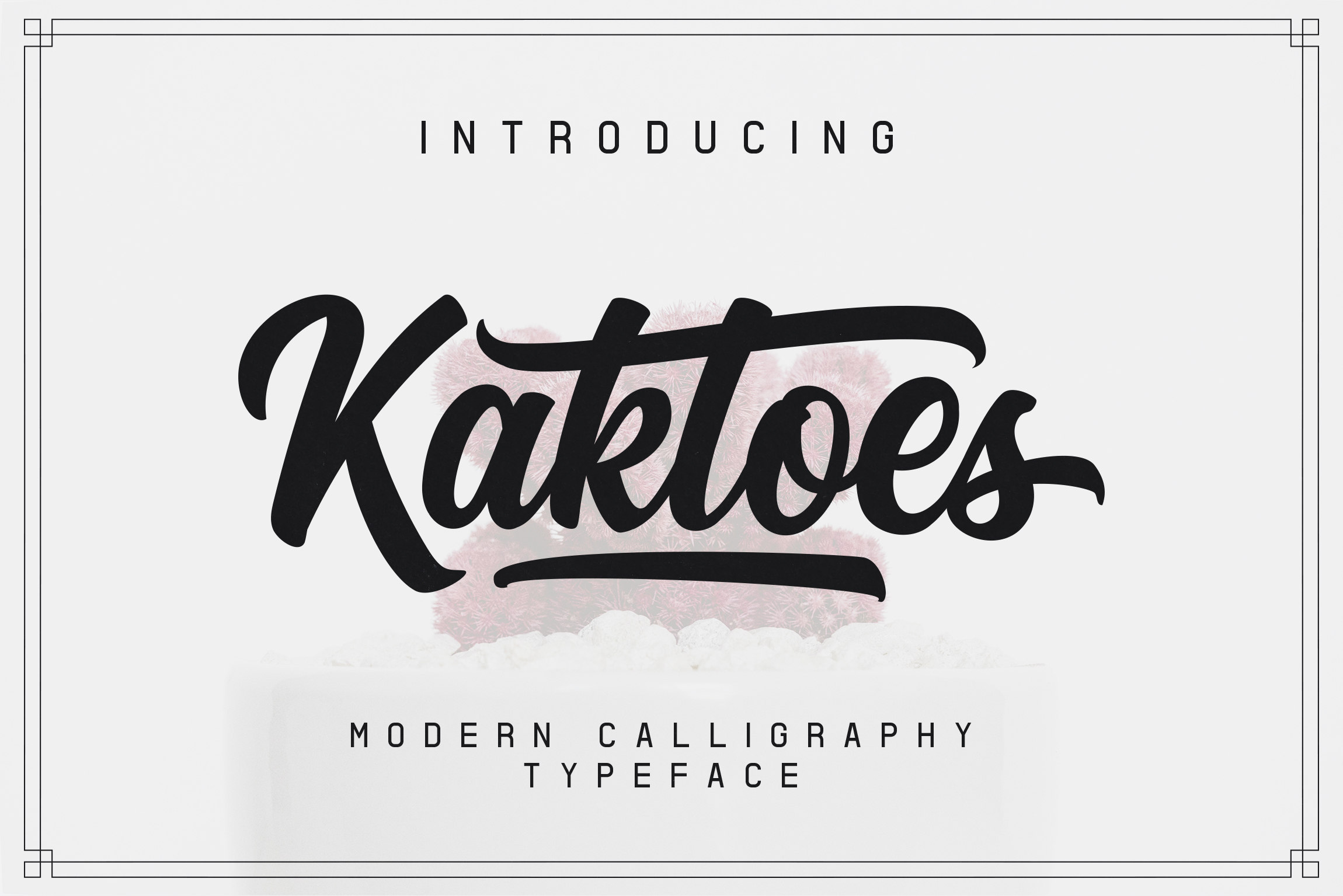 Kaktoes Script Font example image 1