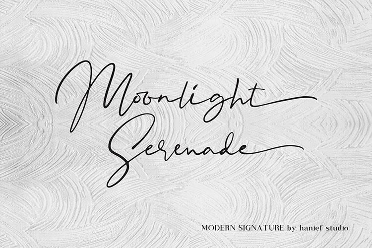 Binetta Signature//Modern Script example image 8