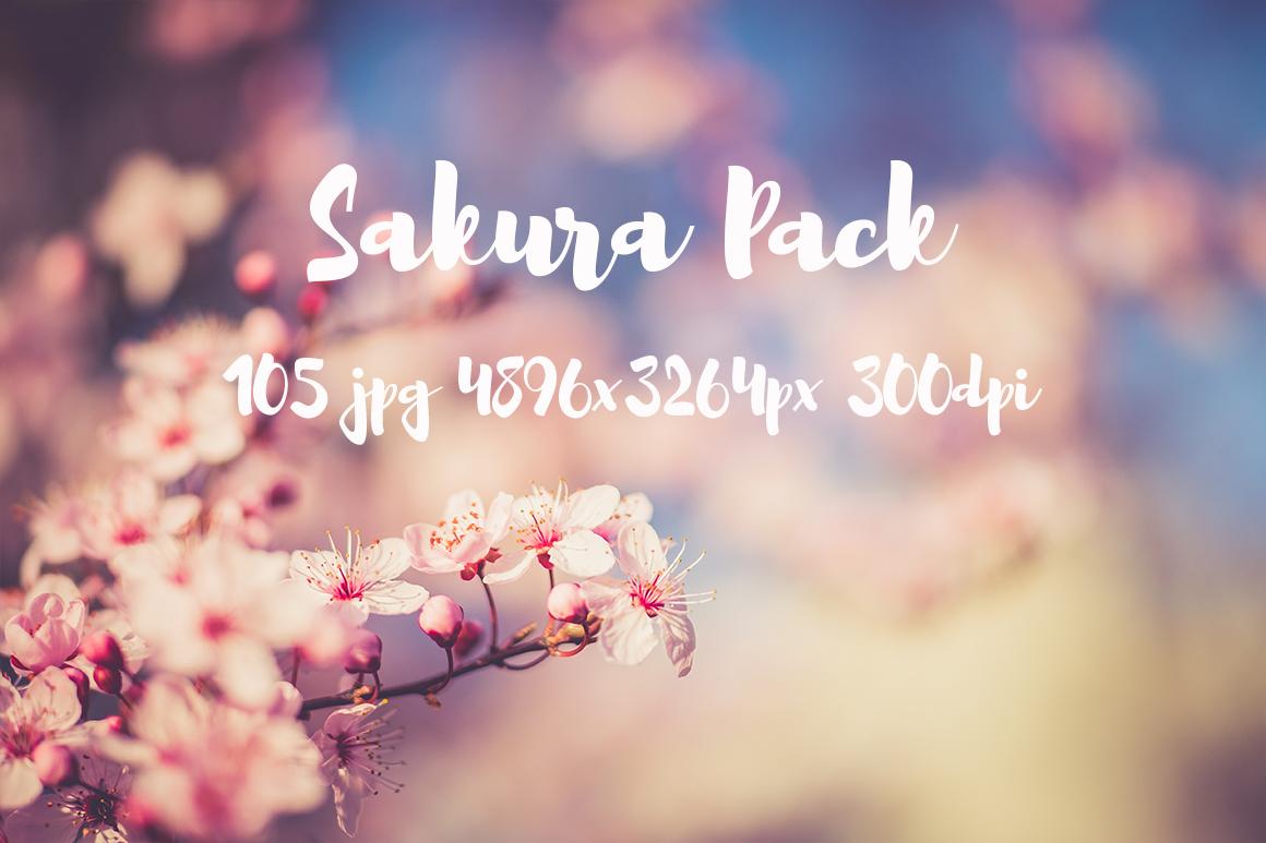 sakura photo pack example image 3